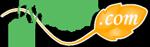 Heilwirkung für viele Beschwerden -  Kamille