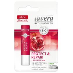 Lippenbalsam Protect & Repair