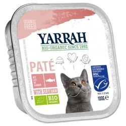 Pâté mit Lachs (für Katzen)