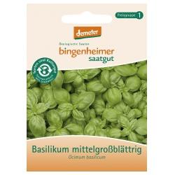 Basilikum, mittelgroßblättrig