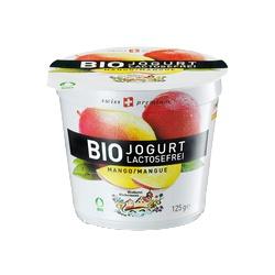 Joghurt mit Mango, laktosefrei