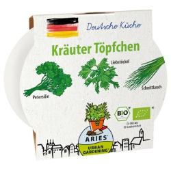 Kräutertöpfchen mit deutschen Kräutern