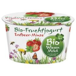 Joghurt mit Erdbeere & Minze
